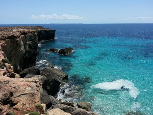 Mallorca gehört zu den beliebtesten Reisezielen der deutschen Touristen. Hier kann man beim Tanken in Spanien auch Sonne tanken.
