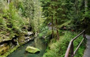 Frische Luft kann man auch in der böhmischen Schweiz beim Wandern Tanken.