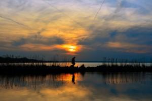 Der Balaton lässt tagsüber viel Sonne Tanken in Ungarn.