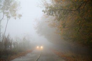 Gerade im Herbst kommt es häufig zu Nebel der die Sichtweite bei der Autofahrt verringert. Hier gilt es die Geschwindigkeit anzupassen.