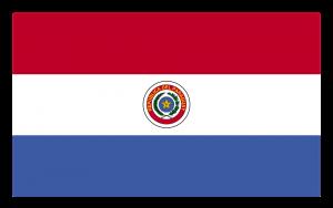 Die Landesflagge von Paraguay.