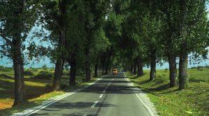 Auf den Landstraßen im Kosovo fährt man höchstens mit 80 km/h.