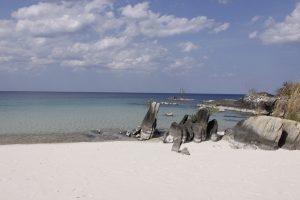 Der Njassasse in Mosambik.